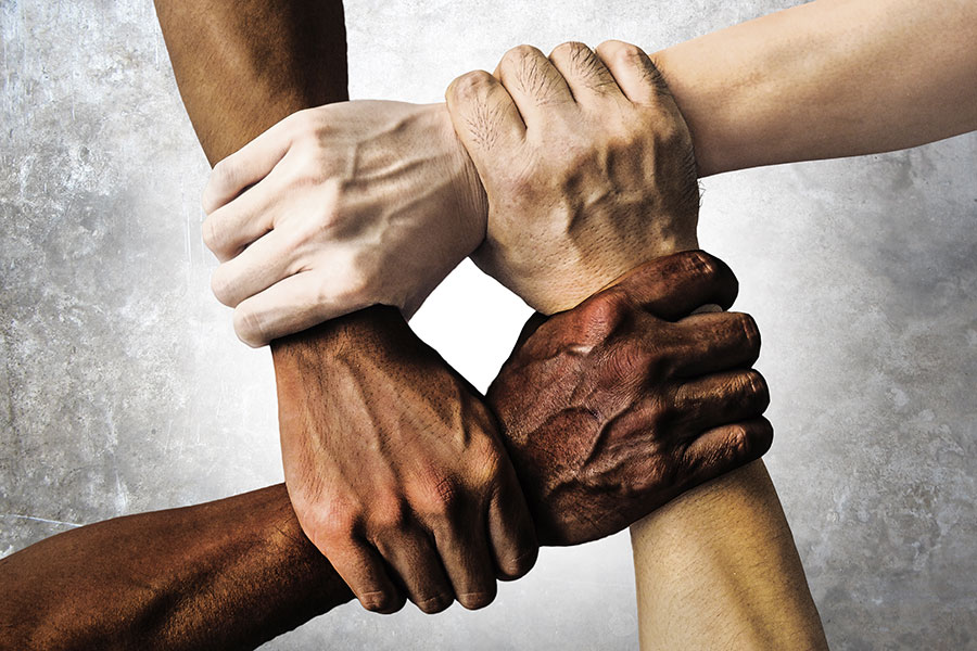 Diversity, tolerance and inclusion
